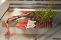Convitto Art Lab | Il metodo Munari - laboratorio per alunni | Beba Restelli | 25/29 settembre - foto 10